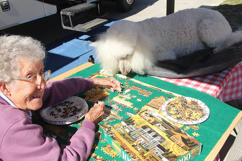 90 year old and her poodle Ringo on road trip 3