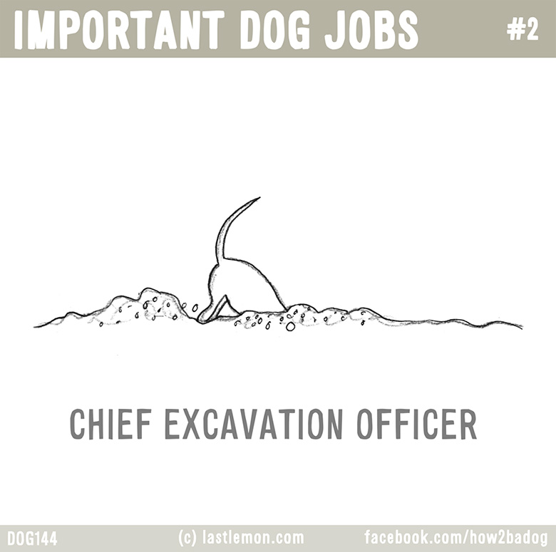 Important Dog Jobs 2