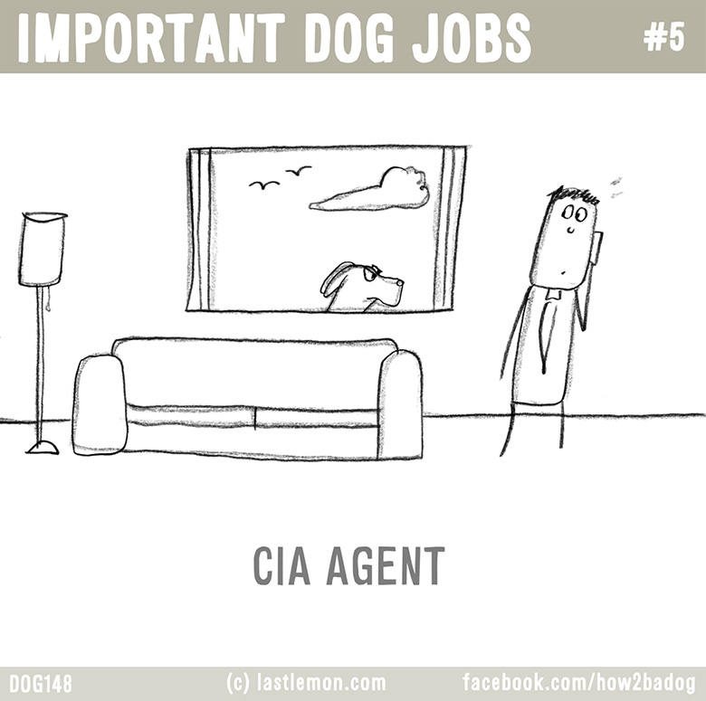 Important Dog Jobs 5