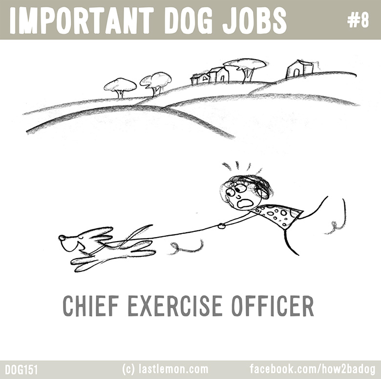 Important Dog Jobs 8