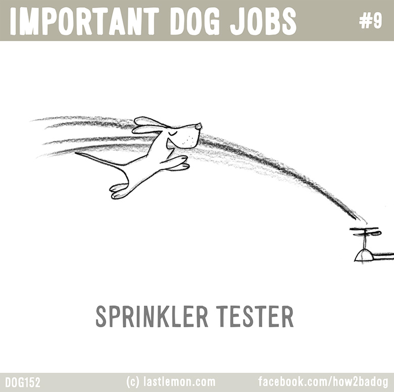 Important Dog Jobs 9