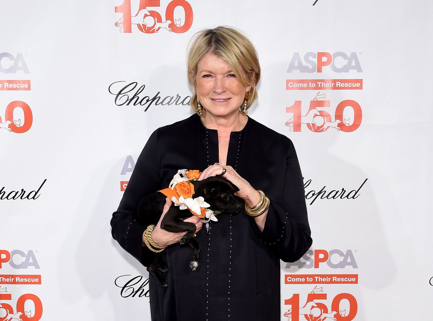 """""""NEW YORK, NY - APRIL 14: Martha Stewart attends ASPCA 19th Annual Bergh Ball honoring Drew Barrymore, hosted by Nathan Lane wiith music by Mark Ronson at the Plaza Hotel on April 14, 2016 in New York City (Photo by Jamie McCarthy/Getty Images for ASPCA)"""""""