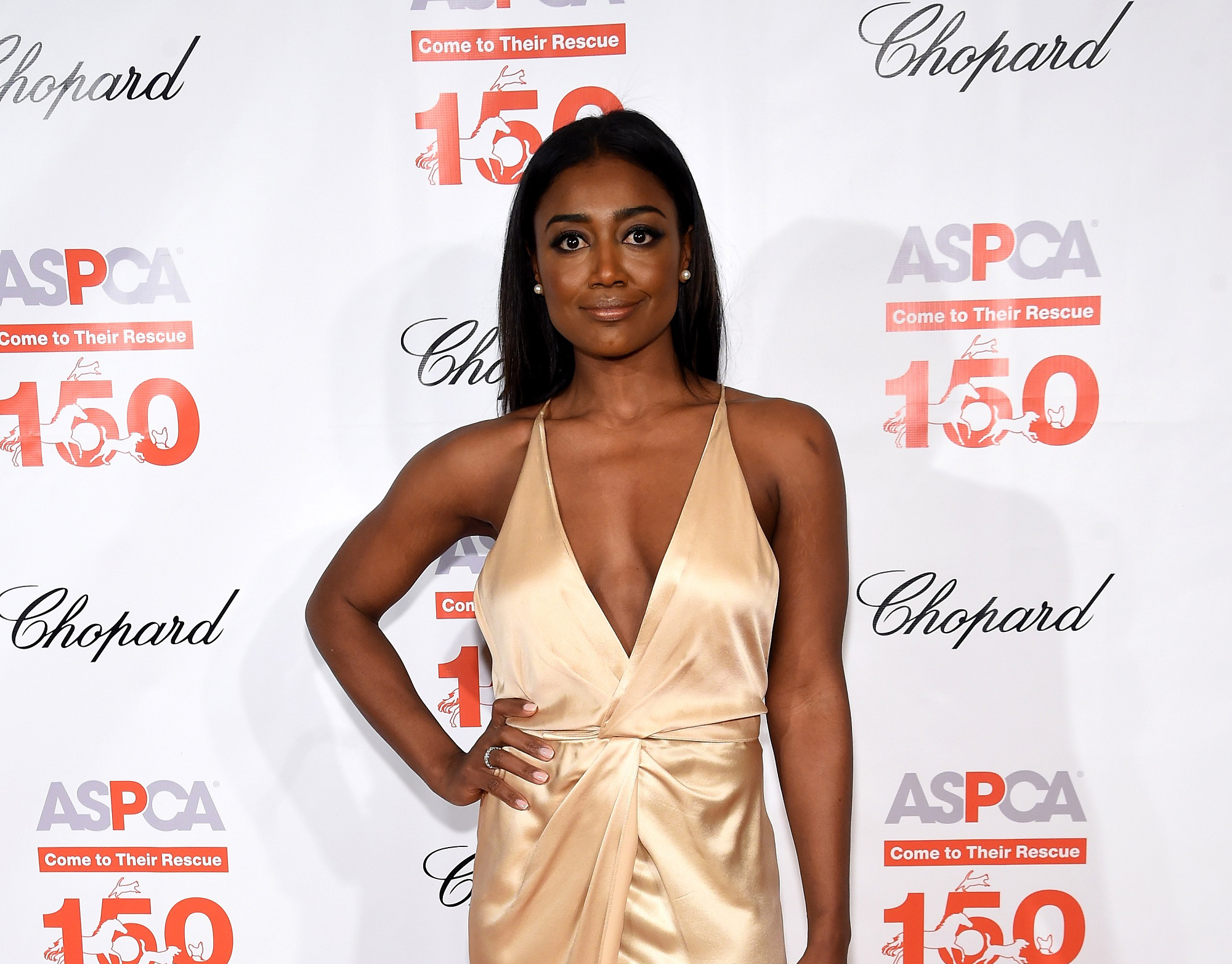 """""""NEW YORK, NY - APRIL 14: Actress Patina Miller attends ASPCA 19th Annual Bergh Ball honoring Drew Barrymore, hosted by Nathan Lane wiith music by Mark Ronson at the Plaza Hotel on April 14, 2016 in New York City (Photo by Jamie McCarthy/Getty Images for ASPCA)"""""""