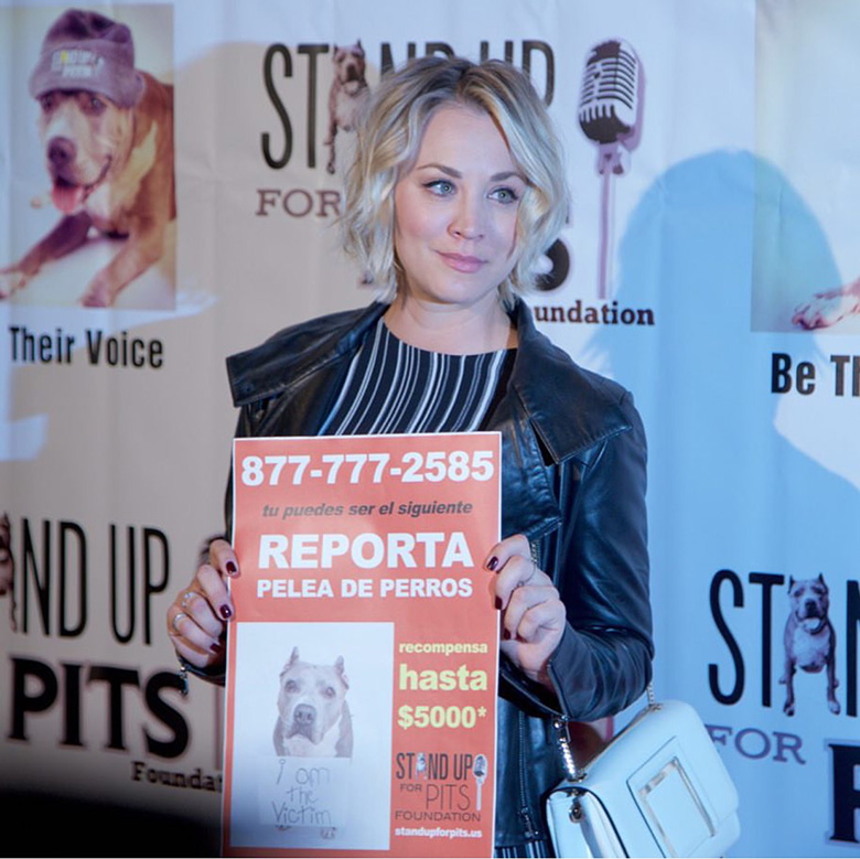 Stand Up for Pits event