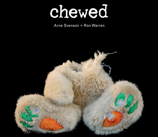 Chewed: An Ode to Destroyed Toys - This Dog's Life