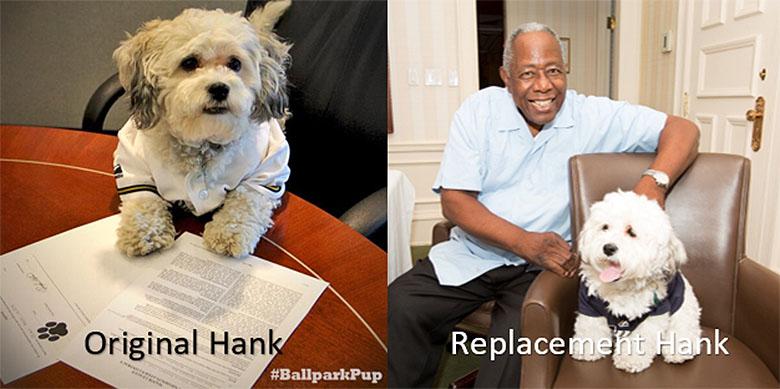Hank 3