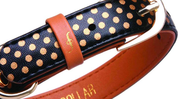 friendship collar closeup