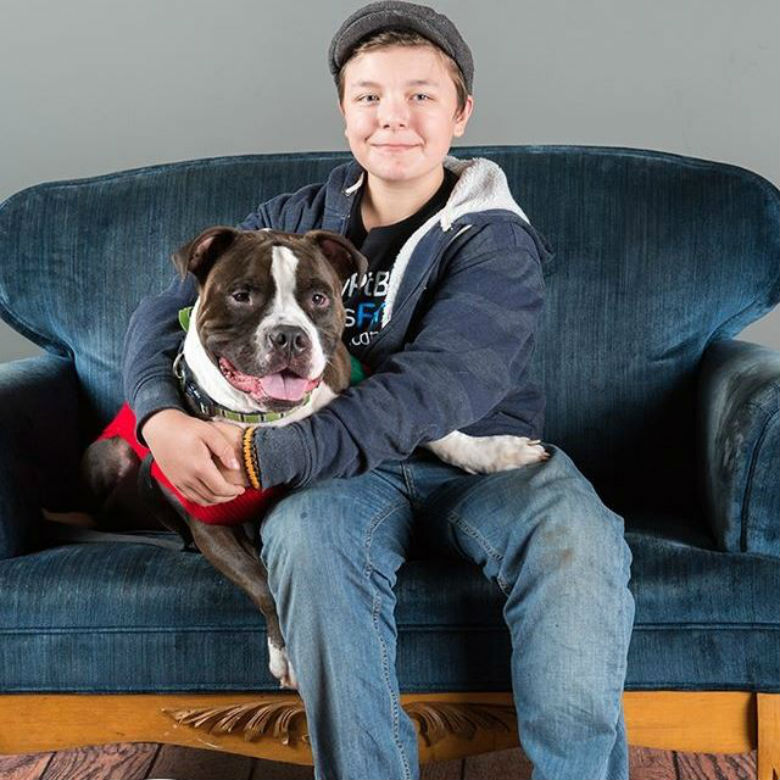 This Organization Lists Pit Bull-Friendly Housing In One