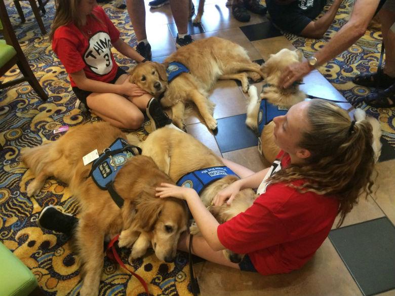 K-9 Comfort Dogs