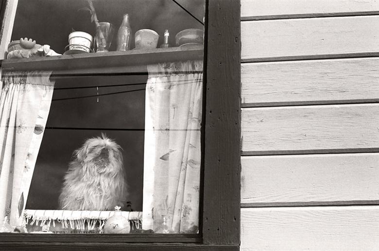 Miss Sadie, 22. Tenakee, Alaska.
