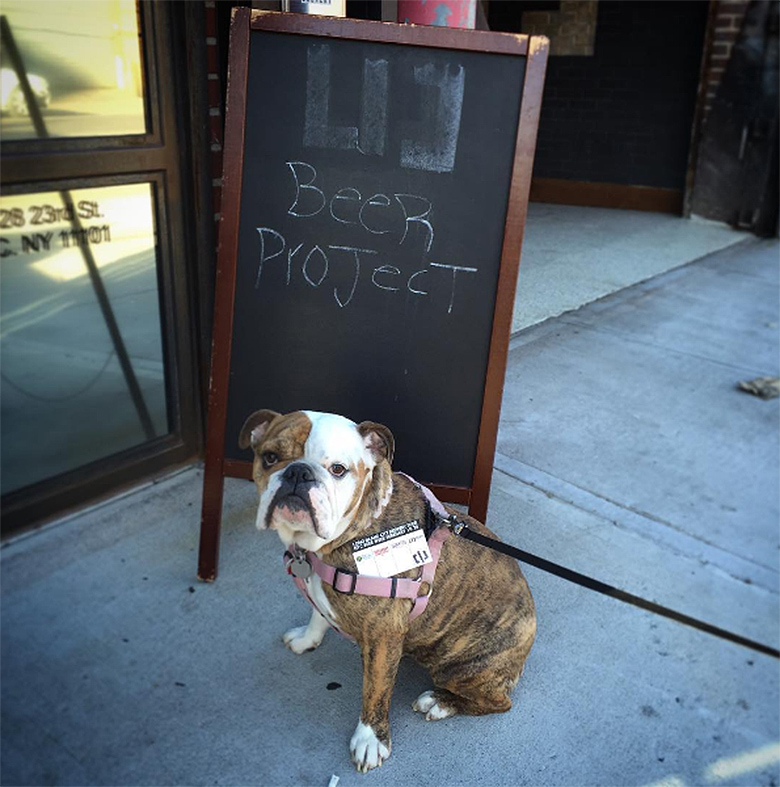 Lic Beer Project Dog Friendly