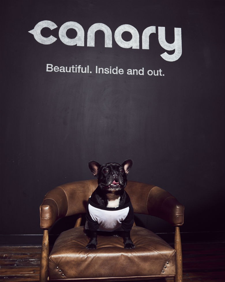 Canary Flex 4