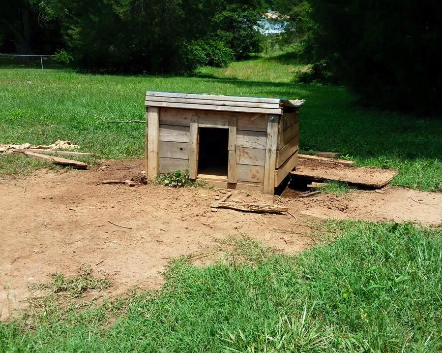 Nana's crudely fashioned dog house