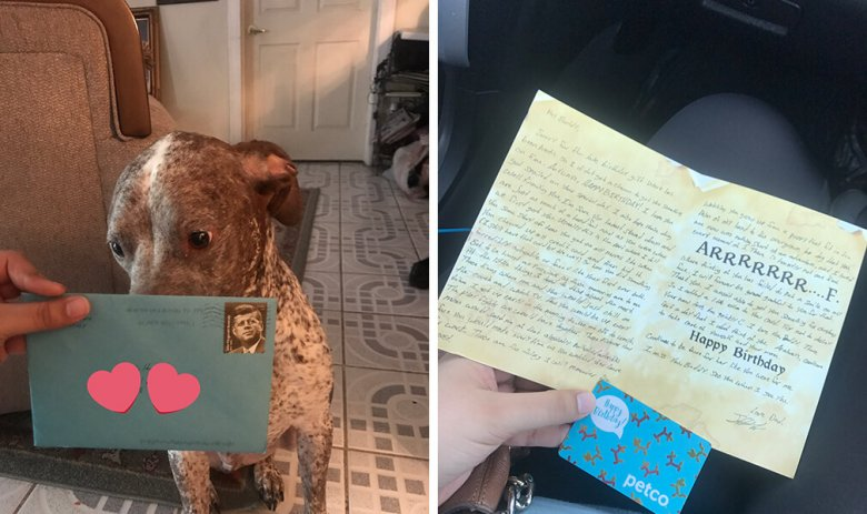 Womans Ex Still Sends Birthday Cards To Their Dog