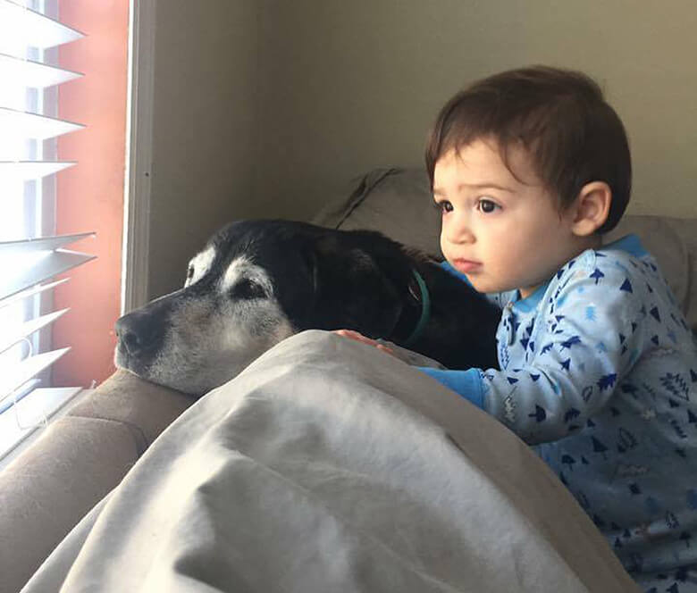 Lynsey Rossi's dog Max and her son. Image credit: Lynsey Rossi
