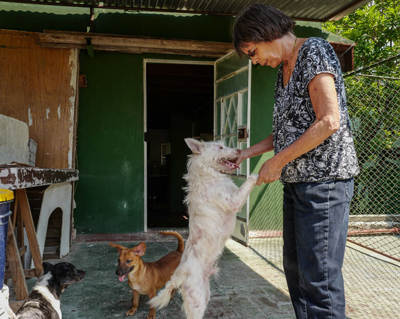 Nora García with Milagro (Miracle), a dog rescued from the trash by a garbage collector. Image Credit: Ralph Quinonez