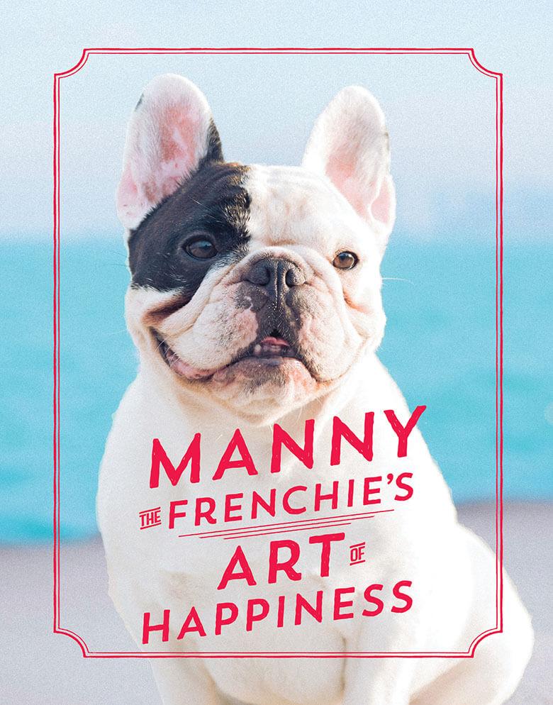 Manny the Frenchie 3