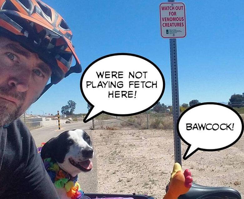 Image Credit: Wheres Bixby
