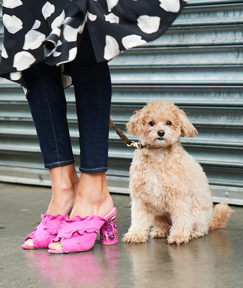 Image Credit: The Dogist. Loeffler Randall shoes.
