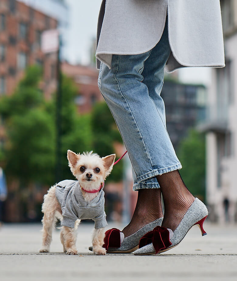Image Credit: The Dogist. Manolo Blahnik shoes.