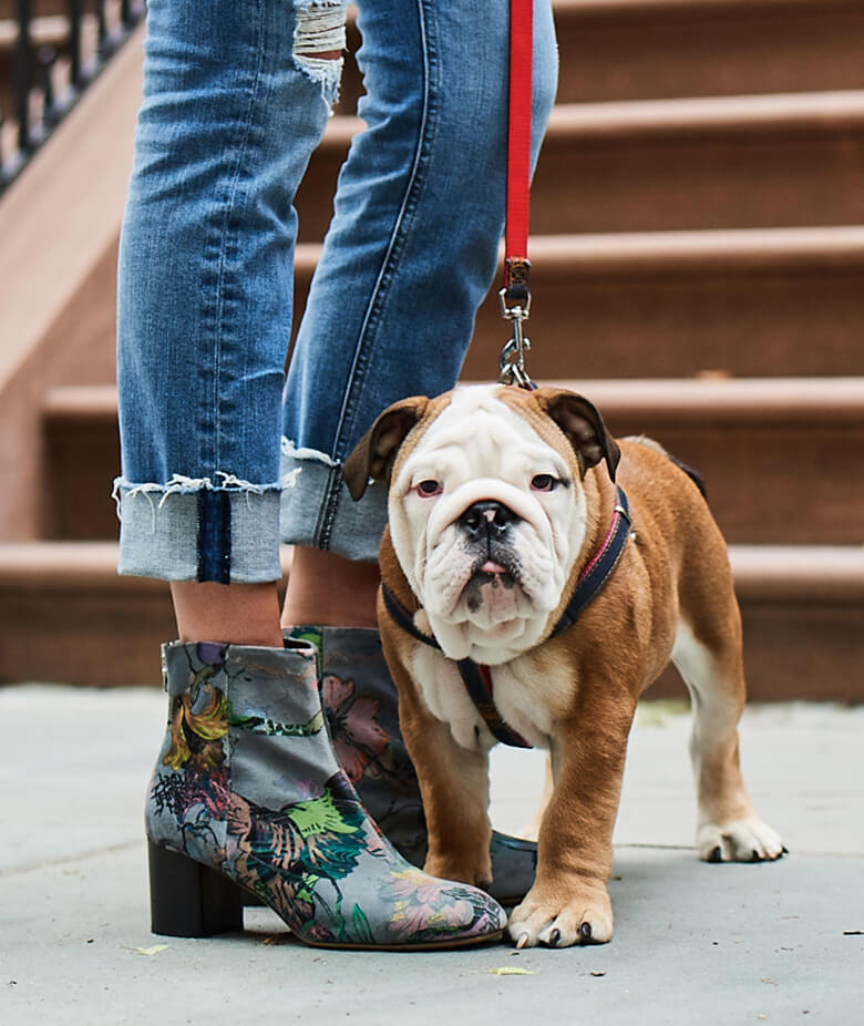 Image Credit: The Dogist. Rag & Bone shoes.