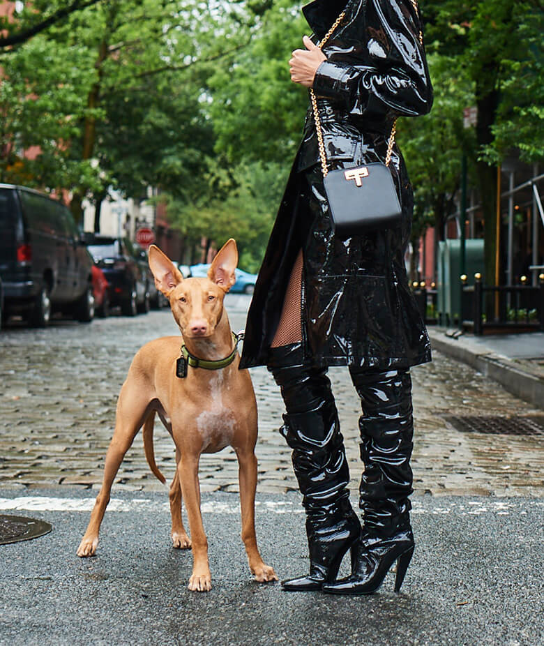 Image Credit: The Dogist. Tom Ford shoes