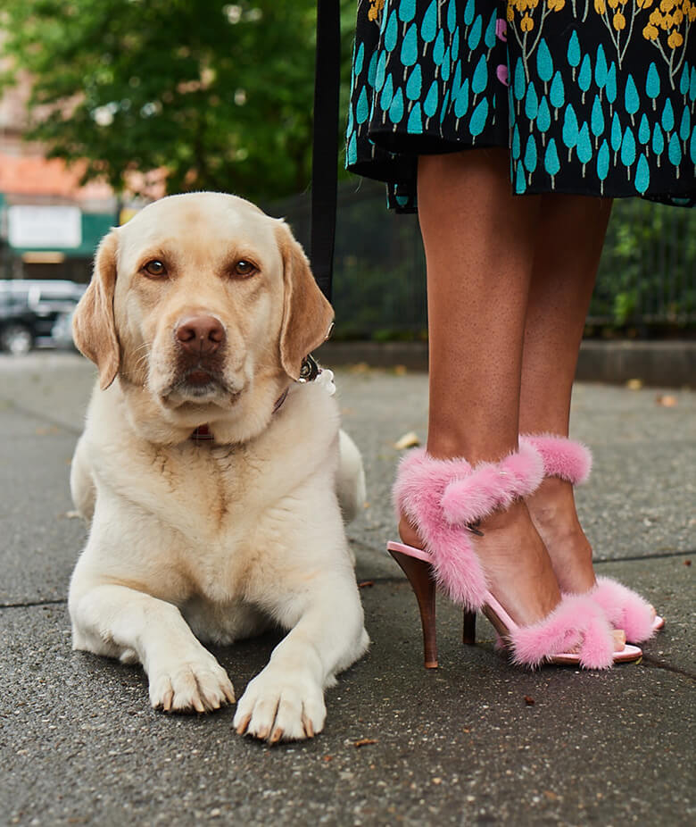Image Credit: The Dogist. Valentino Garavani shoes
