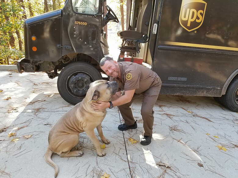 Image Courtesy of UPS Dogs