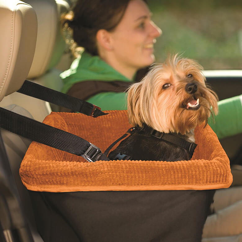 Dog Seat Belt Harness >> Does Your Dog Really Need to Wear a Seat Belt or Be in a ...