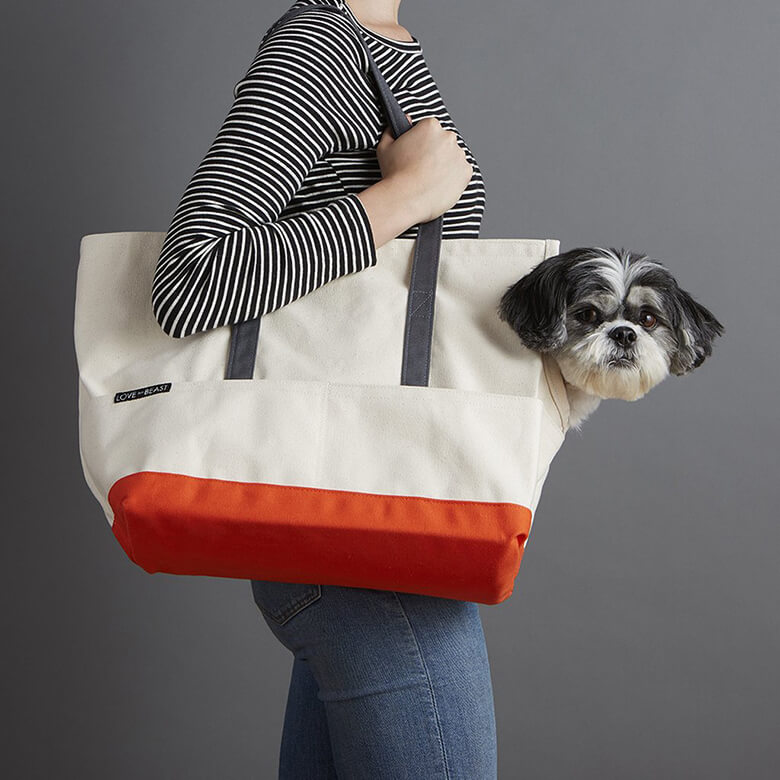 We Love These 7 Carriers for Small Dogs – This Dog s Life - Dog ... ff7bf1865
