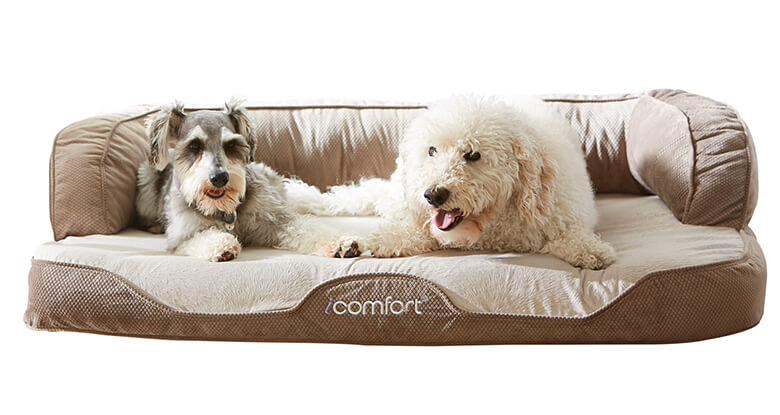 Best Dog Bed For Dogs With Hip Problems