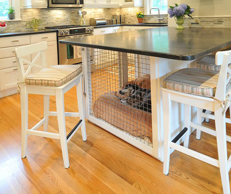 The Best Dog Products and Tips for Those Living in Small ...