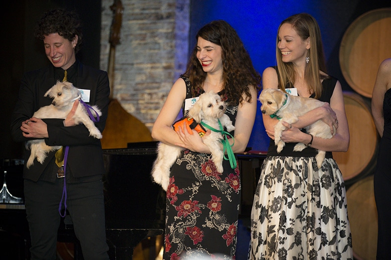 ACC to Hold Major Gala to Help Save More Animals in New York City