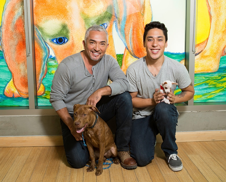 Cesar Millan to Attend San Francisco Pet Fair Where Hundreds of Dogs Will Be Looking for Homes