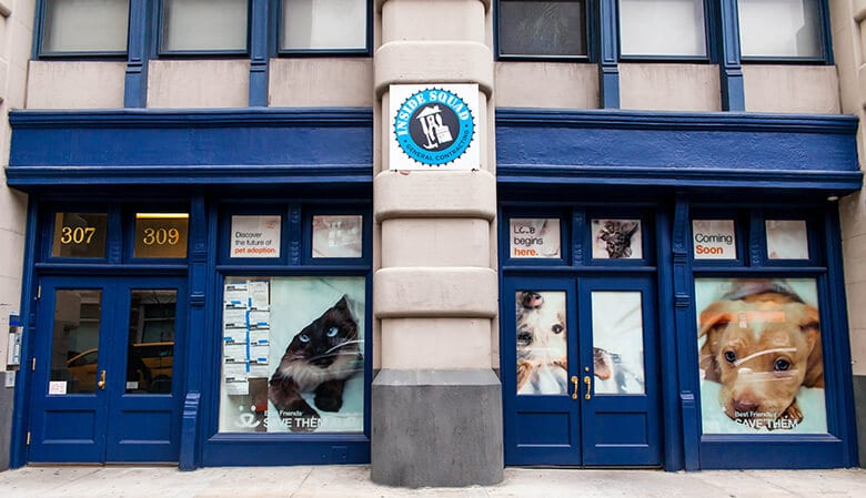 Best Friends Animal Society Unveils Its No-Kill Shelter in New York City