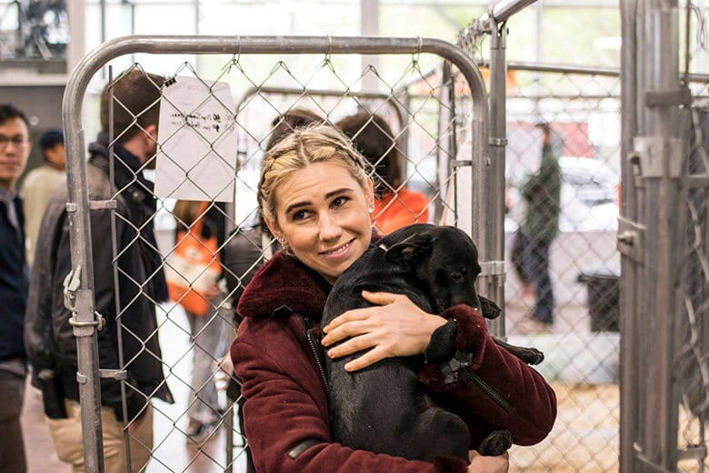 New Yorkers Looking to Add a Dog to Their Family, a Mega-Adoption Event Is Coming