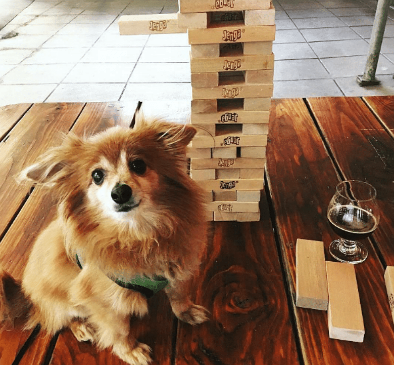 Jenga, Dogs and Beer Galore at Manhattan's Clinton Hall