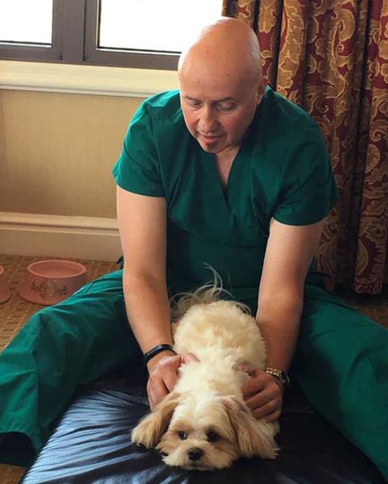    Gene Rukavina of Dancing Dog Massage  
