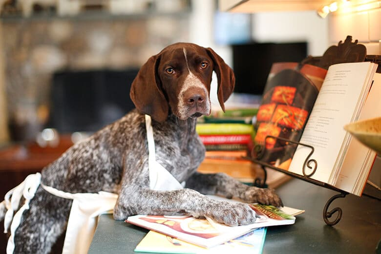 Here Are 4 Dog Food Cookbooks You Will Actually Use