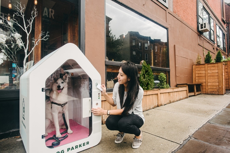 Smart Dog Houses Will Keep Your Pup Safe While You Run Errands