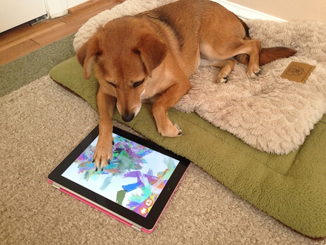 The App That Will Turn Your Dog Into a Picasso