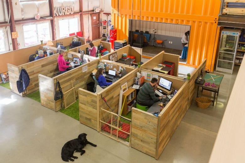 This May Be the Most Dog-Friendly Office We've Ever Seen