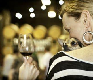 Mutt Lynch Winery|Mutt Lynch Winery|Mutt Lynch Winery|
