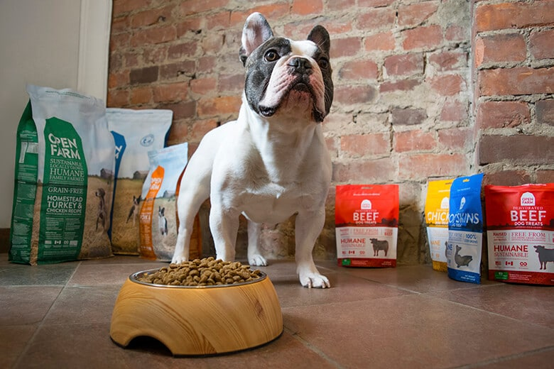 Is This the Most Transparent Dog Food Company?