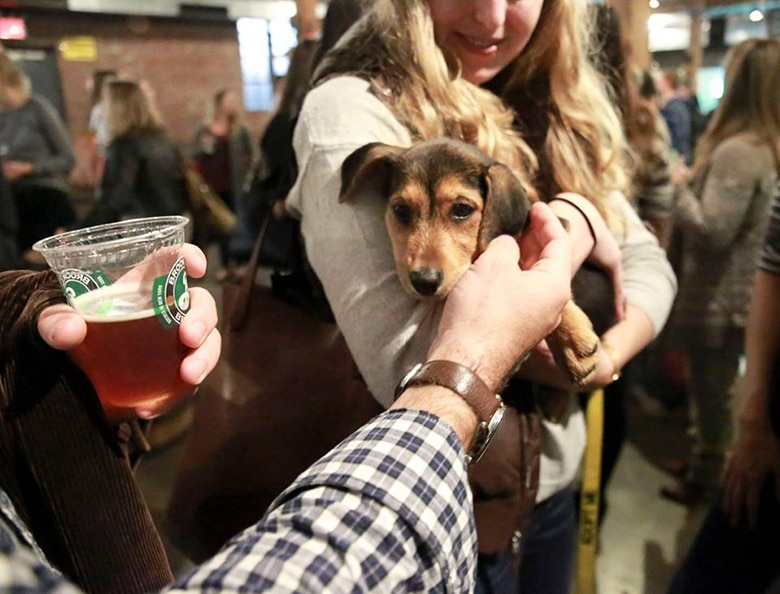 This Group Helps New Yorkers Meet Their Future Pup Over Beers