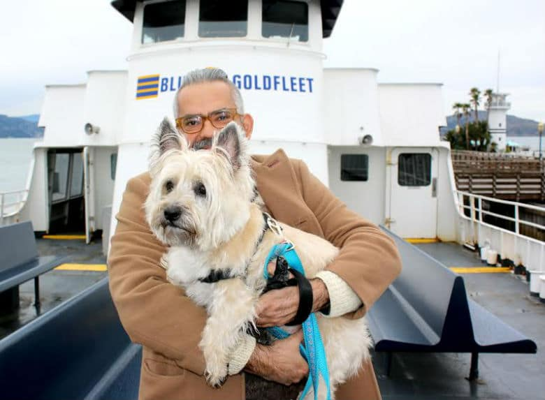 San Francisco's Blue and Gold Fleet Lets People And Their Dogs Enjoy Views of the Bay