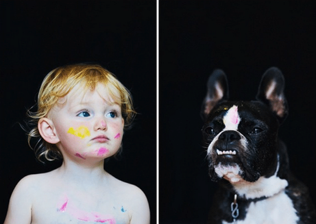 french bulldog and little girl