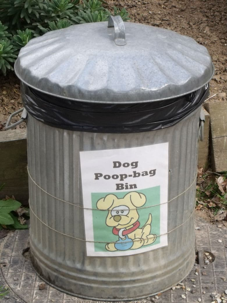 San Francisco Looks to Clean Up Crappy Problem By Composting Dog Poop