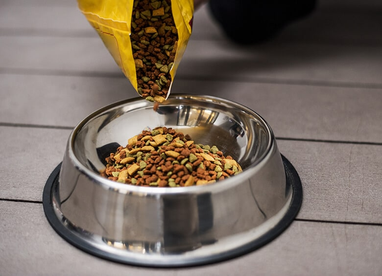 What Do Popular Dog Food Terms Even Mean?