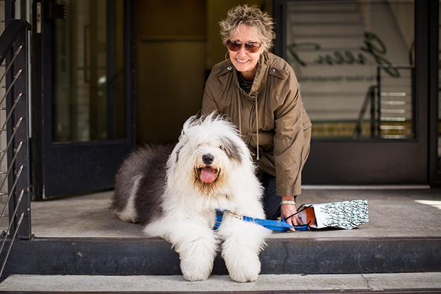 How to Make it as a Dog Owner in New York City